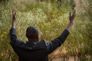 Niger16-MacroShots-25